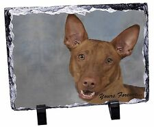 Pharaoh Hound 'Yours Forever' Photo Slate Christmas Gift Ornament, AD-PH1ySL