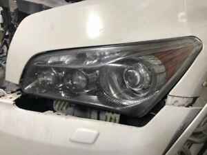 Driver Headlight Xenon HID Fits 11-13 INFINITI QX56 1062411