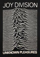 Joy Division Unknown Pleasures 2XL Mens Black T-shirt