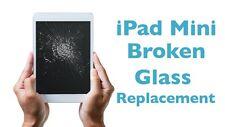 iPad Mini 4 Broken Glass LCD Screen Repair Service FAST SHIPPING