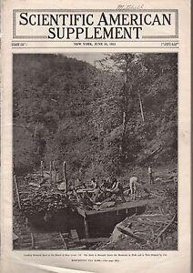 1913 Scientific American Supp June 28 - Index;disease prevention vs cost of life