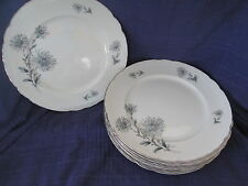 Aladdin WILDFLOWER (Summertime) SALAD PLATE (s) *have more items to this set*