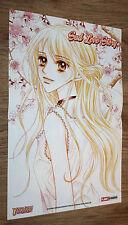 Pretty Cure / Sad Love Story Manga Anime small Poster 42x28cm