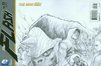 Flash #13 Variant (2012) DC Comics New 52