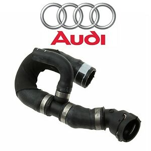 For Audi S4 V6 Lower Main Radiator Coolant Hose w/ Quick Connect Coupling Piece