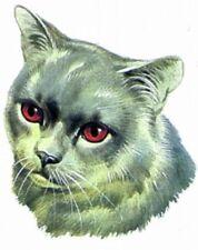 Embroidered Short-Sleeved T-Shirt - British Shorthair Cat Bt2523 Sizes S - Xxl