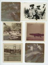New listing (14) Vintage photo lot / Aquatic Animals Porpoise Gator Seal Shows Old Snapshots