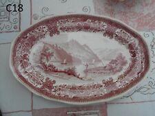 Magnifique Plat Villeroy et Boch Mettlach Décor Burgenland Rose