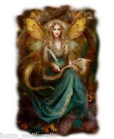 Fairy & Dragon Shirt, Storyteller- Ethereal - Lady- Fantasy T Shirt, Small - 5X