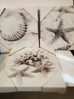 Ocean Sea Shell Canvas Pictures Brand New Wall Hangings 12x12 Square Set of 3