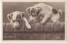 Minnie Keene, Cats, Dog Art Postcard B797