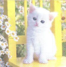 2 Serviettes en papier chaton Blanc Decoupage Paper Napkins White Cat