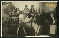 women and children on cow, chariot, rare, funny Vintage Photograph, 1910's
