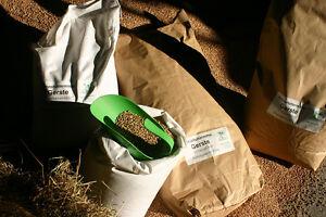 Gerste (0,62 €/kg) Futter GVO-frei 25kg eig. Ernte ´20 Geflügel Nager Fischzucht