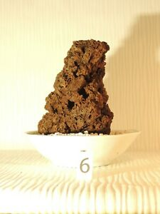 Lava rock for Aquascaping (from Auvergne - FRANCE) - 15x9 cm - 252g