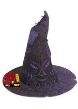 Harry Potter Fancy Dress Sorting Hat