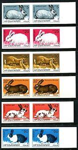 Bulgaria 3146-3151, MNH, Domestic Farm Animals Rabbits Hares x8248