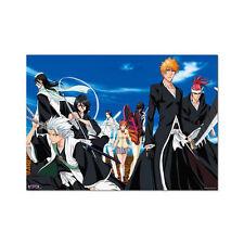 Bleach Ichibankuji B Prize Poster Anime MINT