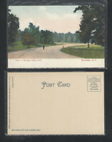 190x VIEW IN GENESEE VALLEY PARK ROCHESTER NY UDB UNDIVIDED BACK POSTCARD