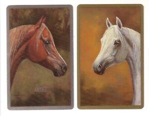 Pair Vintage Named Arabian Horses Antez + Roda -- Swap Playing Cards Mint Unused