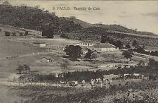 BRAZIL SAO PAULO FAZENDA DE CAFE ED MATINA 34971