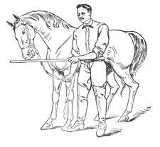 Professor Jesse Beery course in horsemanship