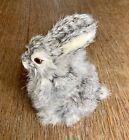 Taxidermy Real Fur Baby Bunny Realistic Lifelike Rabbit Fur Euc Vintage