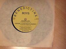Benedictine Boys Radioland 1988  EP, Rare, New Wave