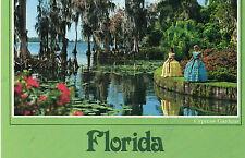 postcard   USA Florida Cypress Trees at Cypres Gardens   unposted