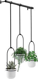 3 Pot Indoor Hanging Planter