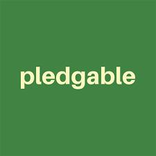 Pledgable.com - Premium Domain Name For Sale No Reserve