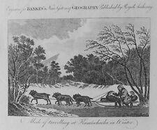 OLD PRINT RUSSIA KAMTSCHATKA KAMCHATKA DOG TEAM SLED SLEDGE 1780