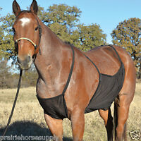 Cashel Pasture HORSE FLY SHEET BELLY GUARD Net Protection Blanket LARGE 82/84