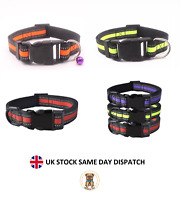 Reflective Dog Collar Adjustable Nylon Dog Puppy Collars with Bell 4 Colours
