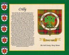 """Irish County Tartan & Cognome STORIA stampa 10 """"x 8"""" & libero REGALO NUOVO DESIGN"""