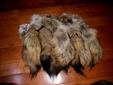 """1 Coyote Tail, """"Select"""" 14-16"""" with Kilt Pin that  holds tight at 80 MPH cytl"""