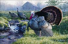 "Turkey Area Rug 37""x52"" WIlderness Farm Pond Wildlife Barn Carpet Flooring Decor"