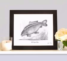 The Royal Forty Classic Legendary Carp Fishing Drawing Mounted Print Picture