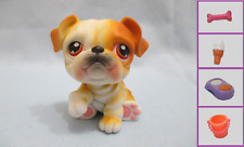 Littlest Pet Shop Dog Bulldog 46 and Free Accessory Authentic Lps