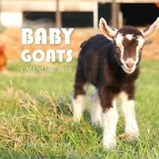 NEW Baby Goats Calendar 2018 16 Month Calendar year 2018 FREE FAST SHIPPING