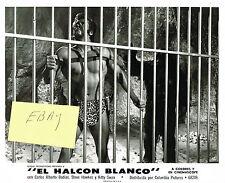 TARZAN EL HALCON BLANCO 1969 NEW! MOVIE PHOTO #2 BURROUGHS STEVE HAWKES BEEFCAK