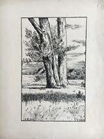 Jugendstil Federzeichnung Landschaft im Breisgau? H. Held Antik 32,5 x 25 cm