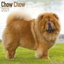 Chow Chow Calendar 2021 Premium Dog Breed Calendars