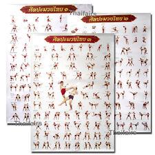 Muay Thai Kickboxen Strategie 3 Plakate für technische Bildung (NEU)