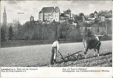 Landshut, Trausnitz, Landwirt bei der Arbeit, Bauer mit Ochse und Pflug