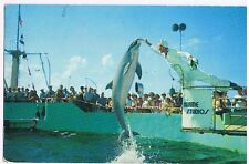 MARINELAND - FLORIDA - JUMPING PORPOISES - POSTCARD # FG-31
