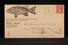 Minnesota: Alexandria 1900 Geneva Beach Showing Bass Fish Advertising Cover