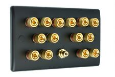 7.1 Matt Black Speaker Wall Face Plate 14 Gold Binding Posts + Single RCA Socket