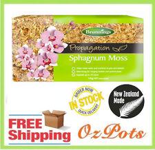 Sphagnum Moss - Premium Grade 150g - Helps to retain water & nutrients in pots