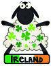 Trèfle Irlandais Mouton Irlande Vitre Pare Choc Autocollant Vinyle Décalque